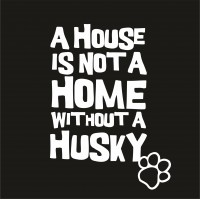 House (Breed)