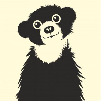 Peeping Baby Bear
