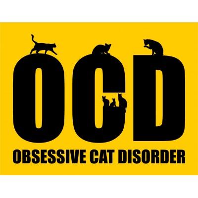 OCD - Cat