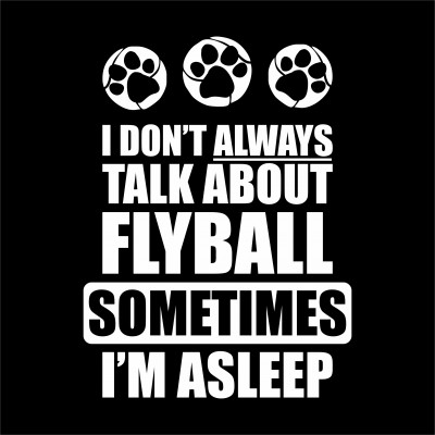 Talk About Flyball