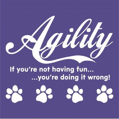 Agility (If you're not having fun)