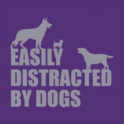 Easily Distracted